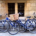 GB-University-Bikes